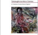 Tartarughe tra arte e scienza: la Collezione Teresita Olivares Paglione