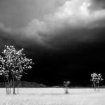 Prima del temporale - Lestans 1963_E0000011_ElioCiol©